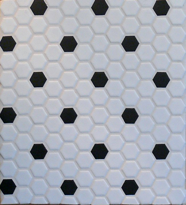 White Black Hexagon Tiles Garden
